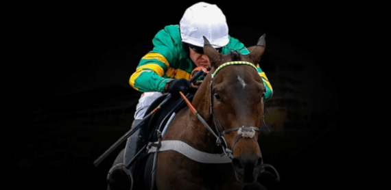unibet horse racing offer